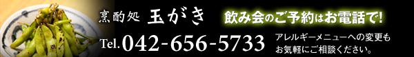 烹酌処玉がき 飲み会のご予約はお電話で! TEL:042-656-5733 アレルギーメニューへの変更もお気軽にご相談ください。